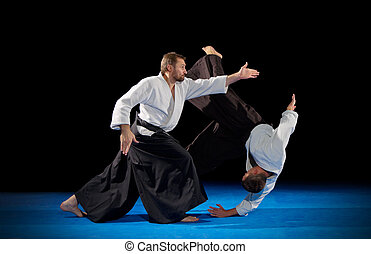 Martial arts fighters isolated on black