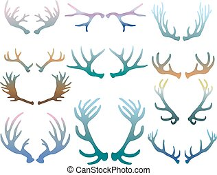 Set of deer antlers