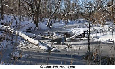 forest stream flows in the winter forest nature landscape snow,