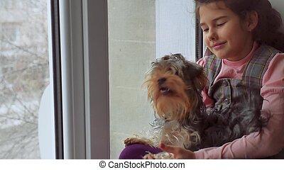 Adolescente, alféizar, Sentado, Mascota, perro, ventana,...