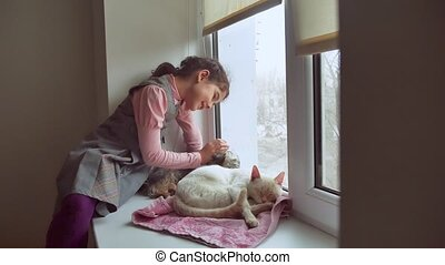 girl teen and pets cat and pet dog looking out the window,...