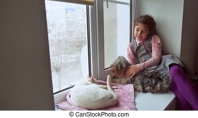 girl teen and pets cat and pet dog a looking out the window,...