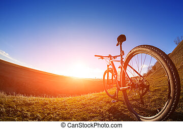 One cycle on a bright day with beautiful landscape...