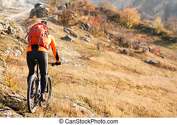 cyclist with a backpack on mountainbike back view -...