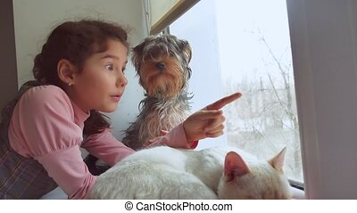 girl teen and pets cat and dog looking out pet the window,...