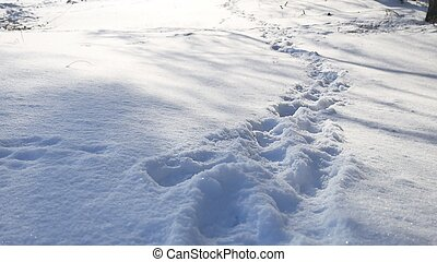 human footprints in the snow winter landscape nature path a...