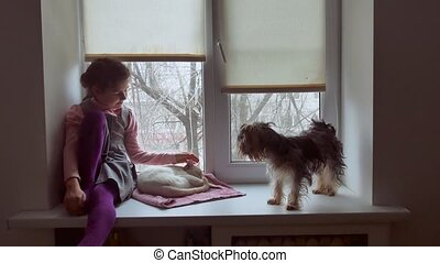 girl teen and dog sitting on a window sill windowsill pet -...