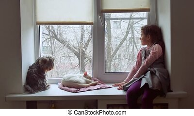girl teen and pets cat and pet dog a looking out window, cat...
