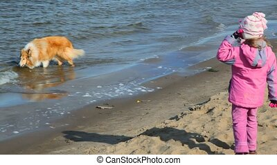 girl with collie dog on beach
