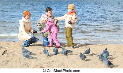 family on beach and feeds pigeons - family of four sits on...
