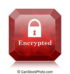 Encrypted icon, red website button on white background.