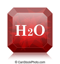 H2O icon, red website button on white background.