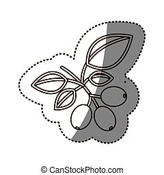 monochrome sticker contour with coffee tree branch vector...