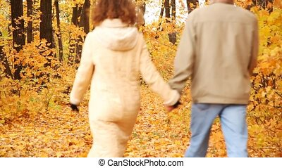 man and woman go forward on wood road covered with autumn...