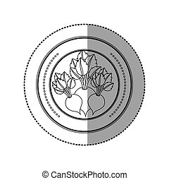 Fresh beets vegetables icon vector illustration graphic...
