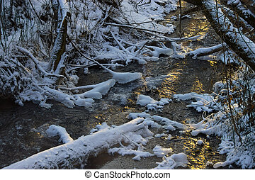 Beautiful river in winter forest with fairy trees sunlight