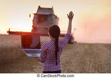 cosecha, computador portatil, mujer, trigo