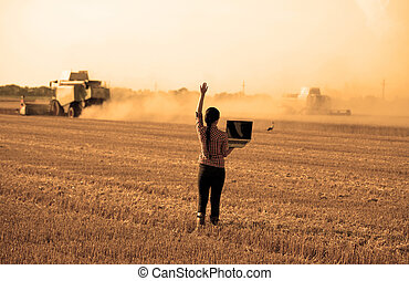 Woman with laptop at wheat harvest