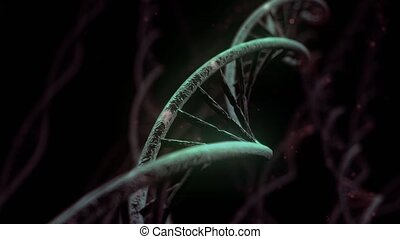 DNA spinning RNA double helix slow science electron...