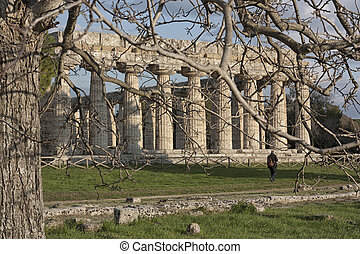 The Ceres temple in Doric style in Paestum, Italy - The...