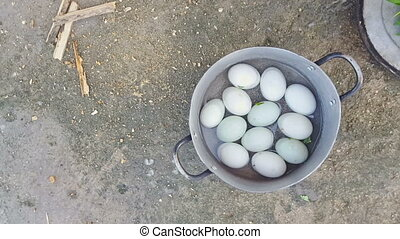 Chicken Eggs Lie in Metallic Saucepan - many white chicken...