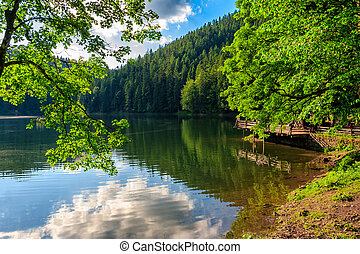 pier on mountain lake in forest - cloud reflection on...