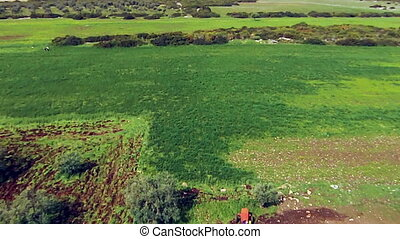 Aerial view green field with a tractor
