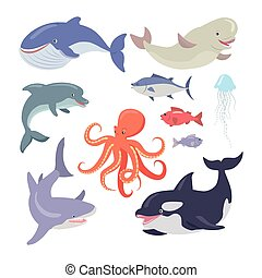 Whale, Shark, Octopus, Seals, Jellyfish, Salmon - Sea life...
