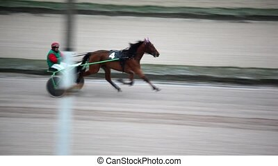 jockey in carts harnessed by thoroughbred running racer on...