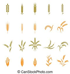 Wheat ears or rice icons set.