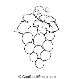 Bunch of wine grapes icon in outline style isolated on white...