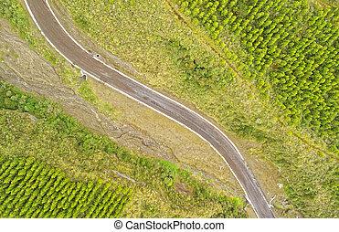 Cotopaxi Ecuador Reforestation Progress - Cotopaxi National...