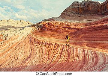 White pocket - Vermilion Cliffs National Monument Landscapes...