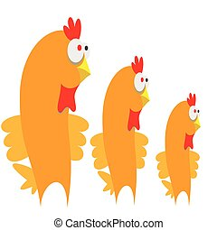 Three chicken on white background