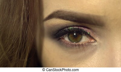 macro of beautiful female eye with nice make up. woman with beauty make up looking at the camera close up.