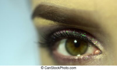 macro of beautiful female eye with nice make up. woman with beauty make up looking at the camera close up in studio