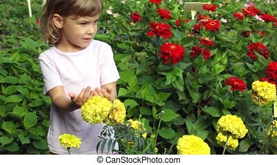 girl stands in botanical garden - girl stands among flowers...