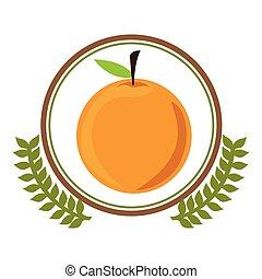 Delicious orange fruit icon vector illustration graphic...