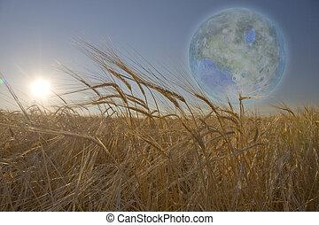 Terraformed Luna seen from field on earth