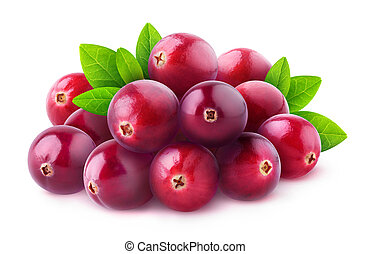Isolated pile of cranberries - Isolated berries. Pile of...