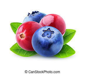 Isolated berries - Isolated cranberries and blueberries....