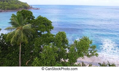 Aerial View Of Ocean And Palms 2, Anse Takamaka Bay 3, Seychelles