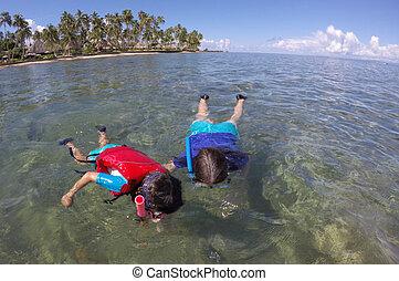 sopra, madre, Scogliera, bambino, Figi, corallo,  Snorkeling