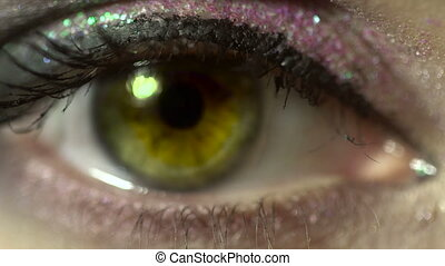 macro of beauty female eye with nice make up. woman with beautiful make up looking at the camera close up in studio