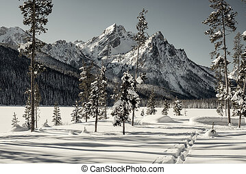Cross Country Ski trail leads to the winter mountains