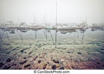 Fiddle Fog - A fog bank that rolled in to Fiddler's Cove...