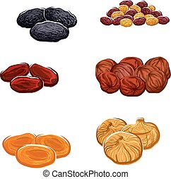 Dried fruits or berries isolated vector icons - Vector icons...