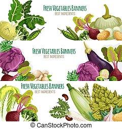 Fresh vegetables vector banners set - Vegetables banners set...