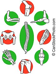 Human skeleton bones and joints icon set. Leg, hand, foot,...