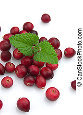 Cranberry with a mint